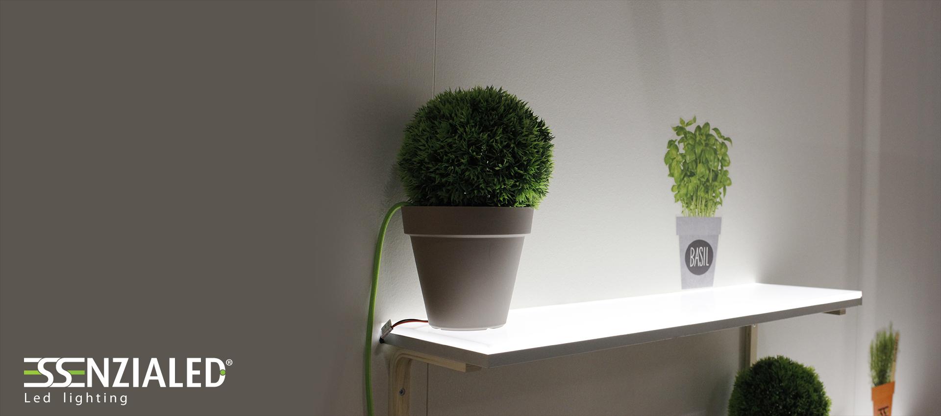 Backlight su misura illuminazione a led for Mensole luminose
